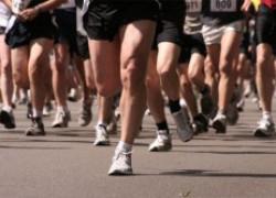 100-дневный марафон. Как все начиналось..